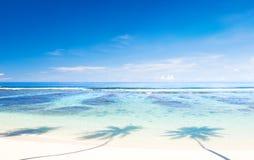在萨摩亚的热带海滩 免版税图库摄影