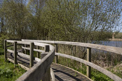 在萨默塞特野生生物沼泽地的木走道,萨默塞特,英国 免版税库存照片