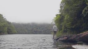 在落在河水的树的旅行的人身分在绿色高地背景的热带森林里 年轻人 股票视频