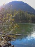 在落矶山脉前面的一个湖 免版税库存图片