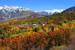 在落矶山脉的秋天风景 免版税库存照片