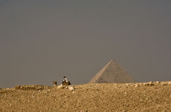 在著名吉萨棉金字塔的骆驼 免版税图库摄影