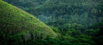 在著名巧克力小山的独特的看法在保和岛,巴拉望岛,菲律宾 图库摄影