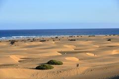 在著名自然马斯帕洛马斯海滩的桑迪沙丘 canaria gran r 库存图片