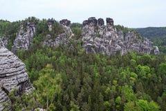 在著名Bastei附近的岩石 免版税图库摄影