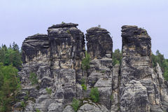 在著名Bastei附近的岩石 免版税库存照片
