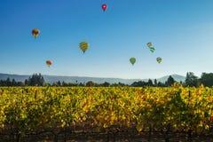 在葡萄园上的气球 库存图片