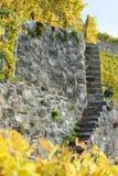 在葡萄园大阳台的石台阶 库存图片