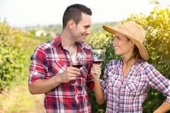 在葡萄园敬酒的浪漫夫妇 免版税库存图片