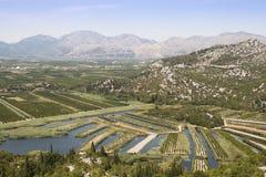 在葡萄园的看法在杜布罗夫尼克,克罗地亚附近 免版税库存图片