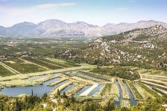 在葡萄园的看法在杜布罗夫尼克,克罗地亚附近 免版税库存照片