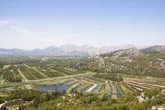 在葡萄园的看法在杜布罗夫尼克,克罗地亚附近 免版税图库摄影