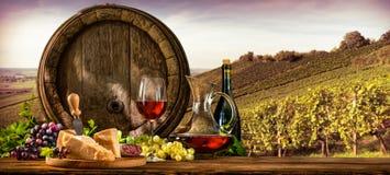 在葡萄园的葡萄酒桶 图库摄影