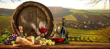 在葡萄园的葡萄酒桶 免版税库存图片