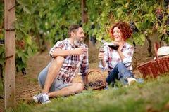 在葡萄园的野餐 免版税库存照片