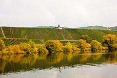 在葡萄园的Chappel在河的特里滕海姆附近 免版税库存照片