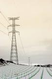 在葡萄园雪的电塔 库存照片