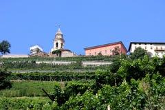 在葡萄栽培附近的cembra白云岩意大利 图库摄影