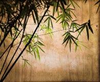 在葡萄酒乌贼属背景的竹子 免版税库存图片