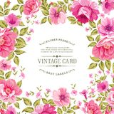 在葡萄酒卡片的花标签 免版税图库摄影