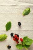 在葡萄酒布料的新鲜的红色和蓝色莓果 库存图片