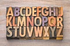 在葡萄酒木头类型的字母表摘要 免版税图库摄影
