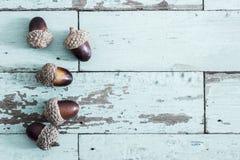 在葡萄酒木背景的橡子 免版税库存照片