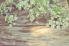 在葡萄酒木背景的白花 免版税库存照片
