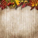 在葡萄酒木背景的秋叶边界 免版税库存照片