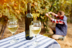 在葡萄酒杯产品的白葡萄酒  免版税图库摄影