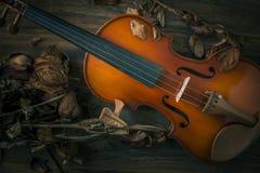 在葡萄酒样式的小提琴在木背景 库存图片