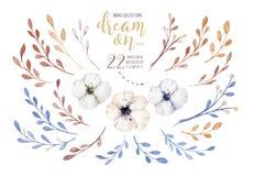 在葡萄酒样式设置的手画水彩花 它` s完善对贺卡,婚礼邀请,开花 皇族释放例证