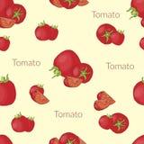 在葡萄酒样式,手工制造样式,与印刷术的动画片样式的水多的蕃茄 库存例证