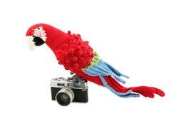 在葡萄酒照相机的钩针编织的鹦鹉 免版税库存图片