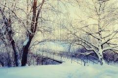在葡萄酒的冬天风景在冬天公园定调子-冬天冷淡的树和老多雪的冬天桥梁 免版税图库摄影