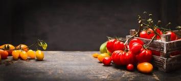在葡萄酒箱子的有机五颜六色的蕃茄在黑暗的木背景,横幅的土气桌上 免版税库存图片