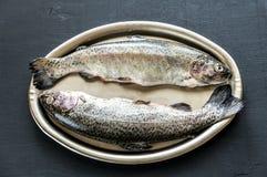 在葡萄酒金属盘子的新鲜的鳟鱼 免版税图库摄影