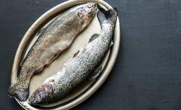 在葡萄酒金属盘子的新鲜的鳟鱼 库存图片