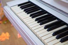在葡萄酒钢琴钥匙的选择聚焦点-葡萄酒过滤器作用 库存照片