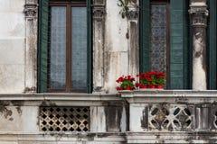 在葡萄酒阳台的红色花在威尼斯,意大利 库存图片