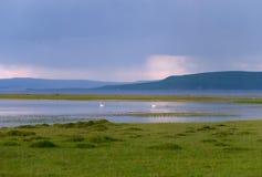 在蒙古的自然 免版税库存照片