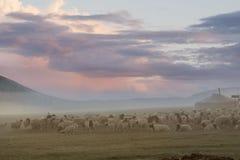 在蒙古语的美好的日出 库存照片