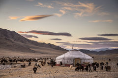 在蒙古风景的Yurt 图库摄影