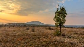 在蒙大拿附近的秋天日落 免版税库存照片
