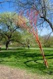 在蒙特利尔植物园的人为和自然树 免版税库存照片