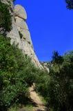 在蒙特塞拉特山,西班牙的森林足迹 图库摄影
