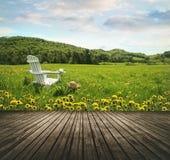 在蒲公英的开放领域的空的木台式 免版税图库摄影