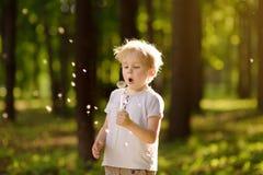 在蒲公英绒毛下的小男孩打击 做愿望 免版税库存图片