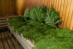 在蒸汽浴冬天样式温泉的绿色杉木 免版税库存照片