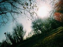 在蓝天后的美好的太阳 免版税库存照片